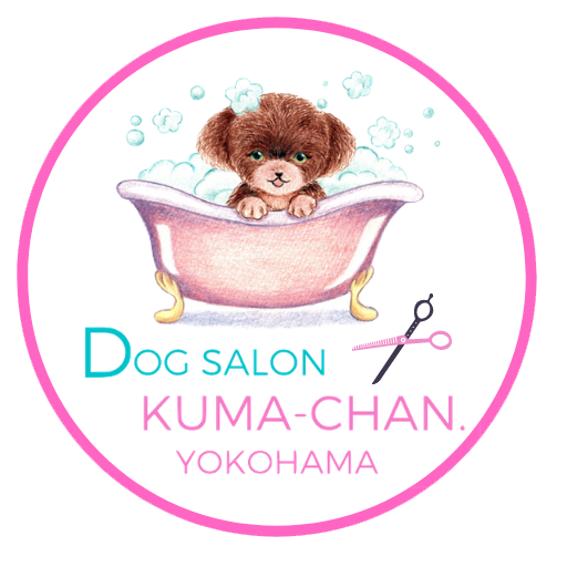 Dog salon kuma-chan yokohama